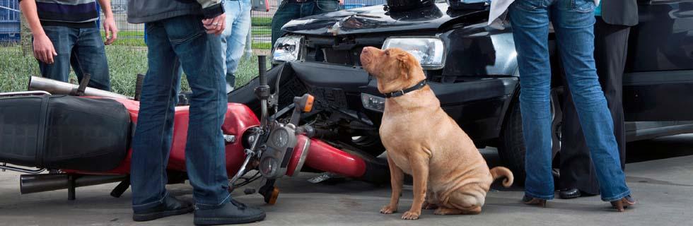 San Diego bike accident attorney